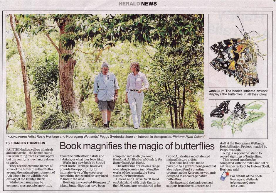 butterfly-article
